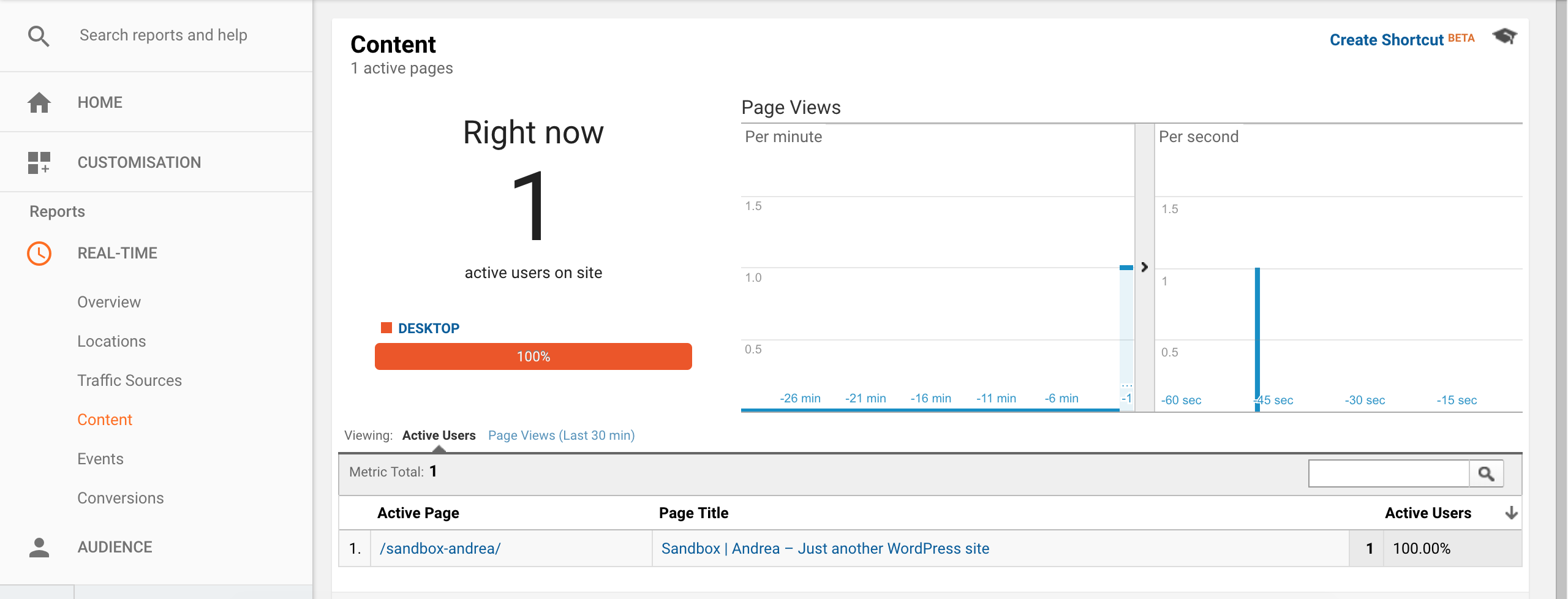 Installare Google Analytics- check